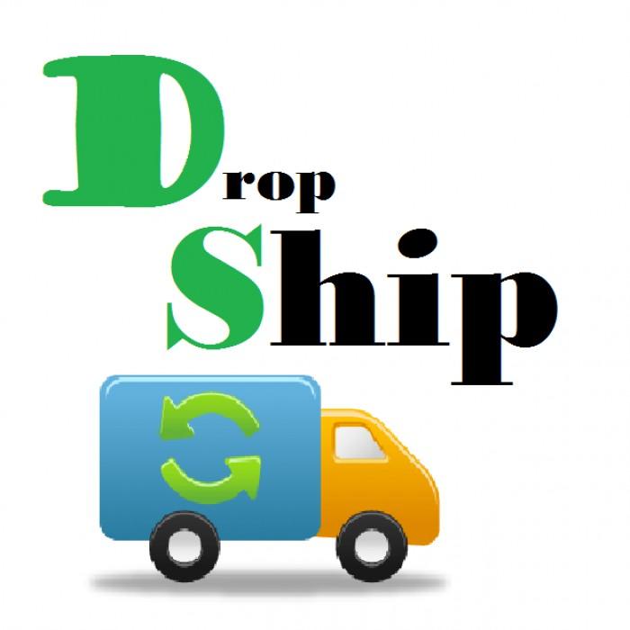 Pengenalan Mengenai Bisnis Dropship